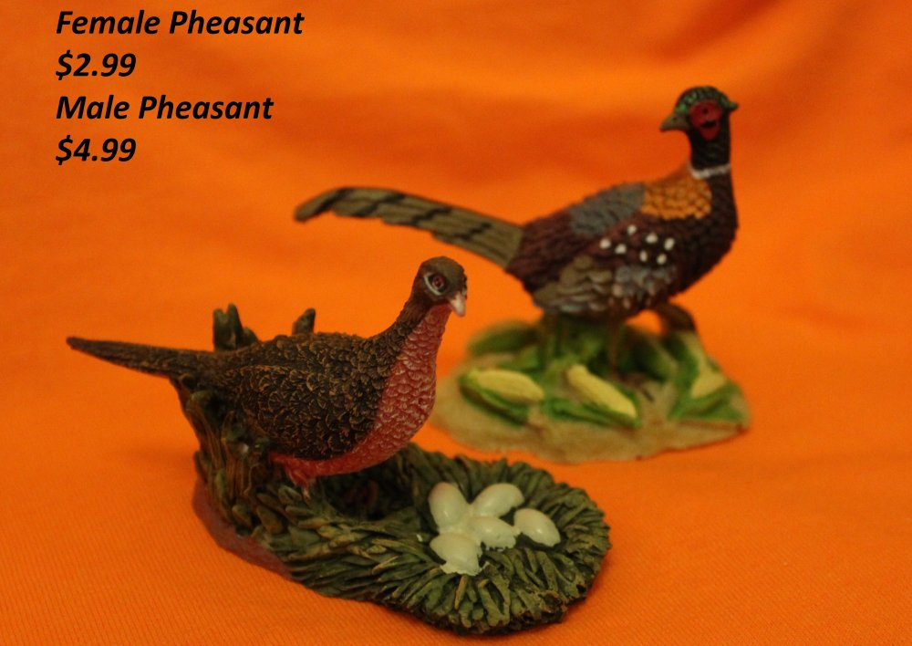 Hen and Cock Pheasants